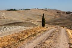 Wiejski krajobraz Tuscany Fotografia Royalty Free