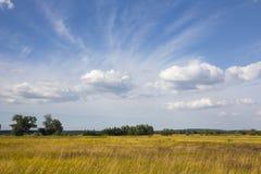 Wiejski krajobraz w letnim dniu Zdjęcia Royalty Free
