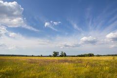 Wiejski krajobraz w letnim dniu Obrazy Royalty Free