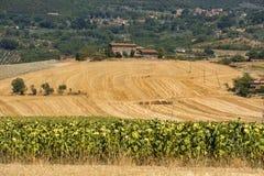 Wiejski krajobraz w val Teverina Umbria, Włochy Zdjęcie Stock