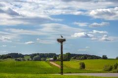 Wiejski krajobraz z bociana gniazdeczkiem przy letnim dniem Fotografia Royalty Free