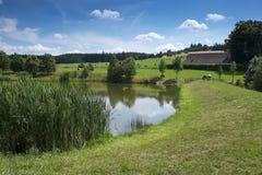 Wiejski krajobraz z jeziorem Obrazy Royalty Free