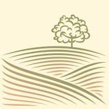 Wiejski krajobraz z polami i drzewem ilustracji