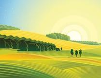 Wiejski krajobraz z polem royalty ilustracja