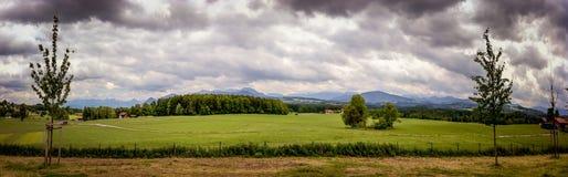 Wiejski krajobraz z pszenicznym polem i chmurnym niebem obrazy royalty free