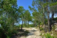 Wiejski krajobraz z widokiem górskim w Hiszpania. Słoneczny dzień. Obrazy Royalty Free