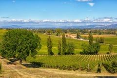 Wiejski krajobraz z winnicą i małym domem Zdjęcie Stock