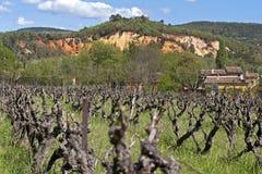 Wiejski krajobraz z winnicy i ochry łupami,  Zdjęcie Royalty Free