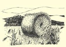 Wiejski krajobrazowy atramentu pióra obrazek - wektor ilustracja wektor