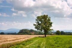 Wiejski krajobrazowy cyklisty odpoczynek pod drzewem w ślązaka regionie przeciw tłu góra western Carpathians obraz royalty free