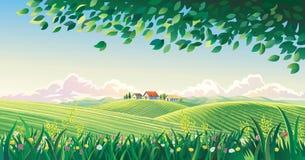 Wiejski lato krajobraz z kwiatami ilustracja wektor