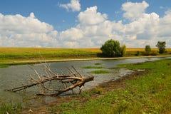 Wiejski lato rzeki krajobraz Obrazy Royalty Free