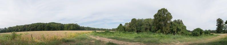 Wiejski Północny Mississippi Rolniczy krajobraz Zdjęcia Royalty Free