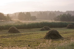 wiejski Poland krajobrazowy lato Obrazy Stock