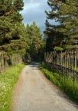 wiejski Sweden Zdjęcie Stock