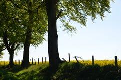 Wiejski wieś widok obraz royalty free