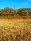 Wiejski Wisconsin jesieni krajobraz zdjęcie royalty free