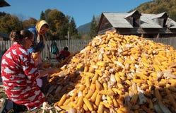 Wiejski życie w Tarcau gór wiosce. obraz stock