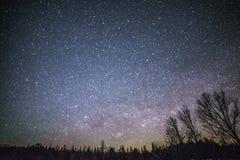 Wiejski zima krajobraz przy nocą z drzewami i gwiazdami Zdjęcie Royalty Free
