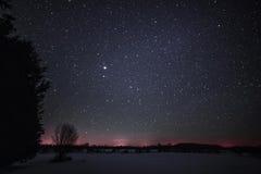 Wiejski zima krajobraz przy nocą z drzewami i gwiazdami Zdjęcia Royalty Free