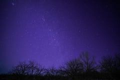 Wiejski zima krajobraz przy nocą z drzewami i gwiazdami Fotografia Royalty Free