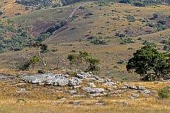 Wiejskiej Suchej zimy roślinności Chmurnego nieba pustkowia Błękitny Landscap Obraz Royalty Free