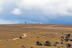 Wiejskiej Suchej zimy roślinności Chmurnego nieba pustkowia Błękitny Landscap Obraz Stock