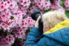 Wiek średni kobieta fotografuje kwitnących różaneczniki obraz stock