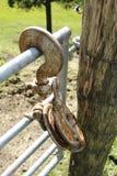 Wiek, ośniedziały pulley z haczykiem, karabinka haczyk Fotografia Royalty Free