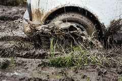 Wiel van de auto in de modder Stock Foto