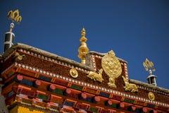 Wiel van Dharma en gouden deers Royalty-vrije Stock Foto