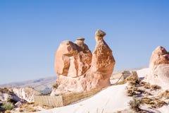 Wielbłąd Cappadocia, Turcja zdjęcie royalty free