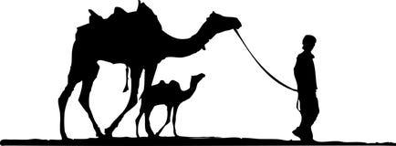 wielbłąda pustyni matka royalty ilustracja