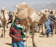 Wielbłądy przy bydlę rynkiem Babile Etiopia Zdjęcia Royalty Free