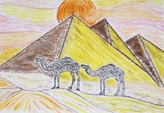 Wielbłądy stoi przed ostrosłupami Obrazy Royalty Free