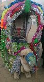 Wielbłądzia jazda Zdjęcie Royalty Free