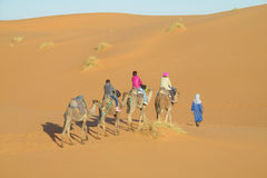 Wielbłądzia karawana w Afryka piaska pustyni diunach Zdjęcia Royalty Free