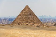 Wielbłądzia karawana z turystami przed Wielkimi ostrosłupami Giza, Egipt zdjęcie royalty free