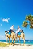 Wielbłądzia przejażdżka na dniu ślubu obraz stock