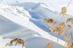 Wielcy śniegów dryfy, płochy na zima słonecznym dniu i zdjęcie stock