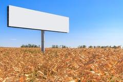 Wielcy billboardów stojaki po środku żółtego kukurydzanego pola Zdjęcie Royalty Free