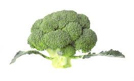 Wielcy brokuły z liśćmi Obrazy Royalty Free