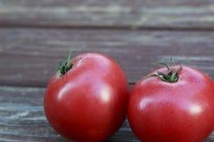 Wielcy Czerwoni Dojrzali pomidory Zdjęcie Royalty Free