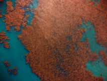 Wielcy kelp łóżka od nieba od above, ptaka oka widok Zdjęcia Stock