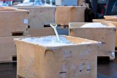 Wielcy Plastikowi połowów zbiorniki z lodem w schronieniu Zdjęcia Royalty Free