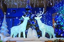 Wielcy salowi boże narodzenia lub wakacyjny pokaz Obrazy Royalty Free