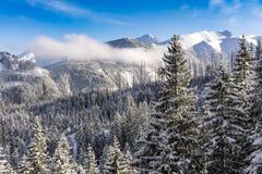Wielcy szczyty Wysokie Tatrzańskie góry w zimy landsc Obrazy Royalty Free