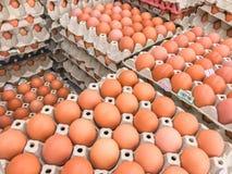 Wiele świeży jajeczny panel brogujący w warstwach obraz royalty free