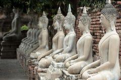 Wiele Buddha statua siedzi Fotografia Stock