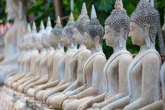 Wiele Buddha statua siedzi Zdjęcie Stock